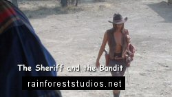 The Sheriff and the Bandit